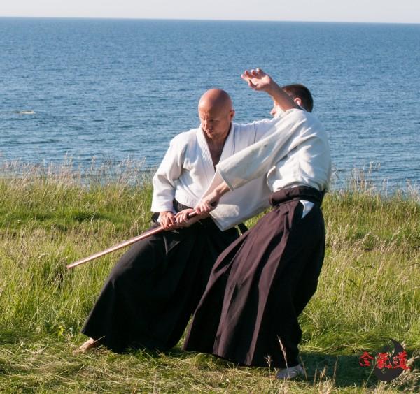 2014 Aikido looduses