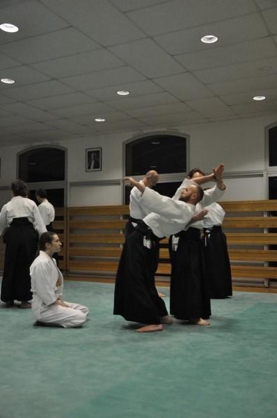 2017 Vinge nädal Shumeikan dojo's prantsusmaal